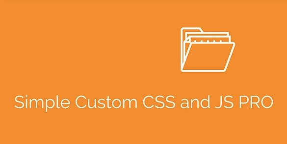 Simple Custom CSS and JS PRO v4.22